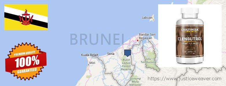 어디에서 구입하는 방법 Clenbuterol Steroids 온라인으로 Brunei
