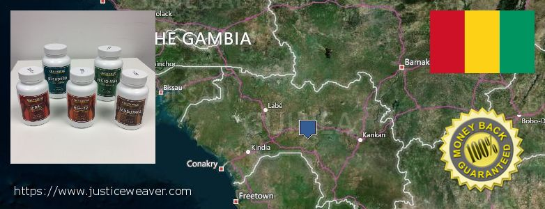 어디에서 구입하는 방법 Clenbuterol Steroids 온라인으로 Guinea