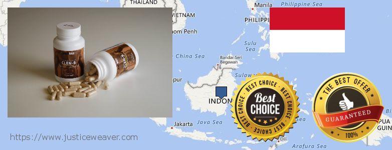 어디에서 구입하는 방법 Clenbuterol Steroids 온라인으로 Indonesia
