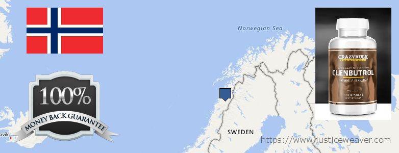 어디에서 구입하는 방법 Clenbuterol Steroids 온라인으로 Norway