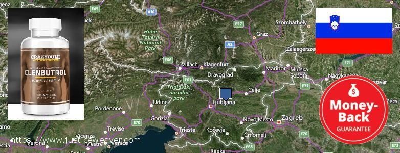 어디에서 구입하는 방법 Clenbuterol Steroids 온라인으로 Slovenia