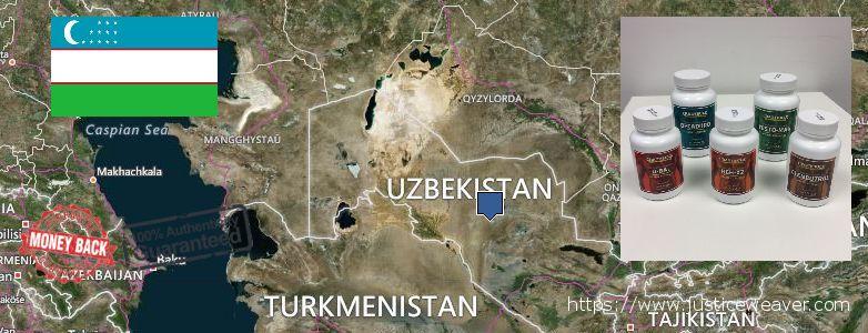 어디에서 구입하는 방법 Clenbuterol Steroids 온라인으로 Uzbekistan