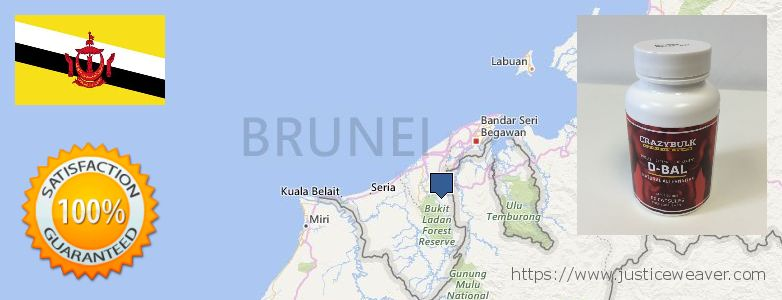 कहॉ से खरीदु Dianabol Steroids ऑनलाइन Brunei