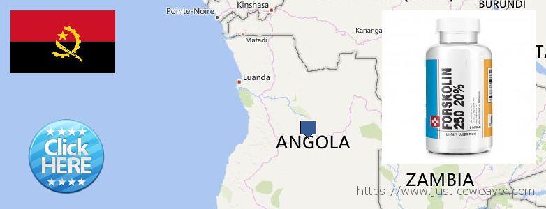 Къде да закупим Forskolin онлайн Angola