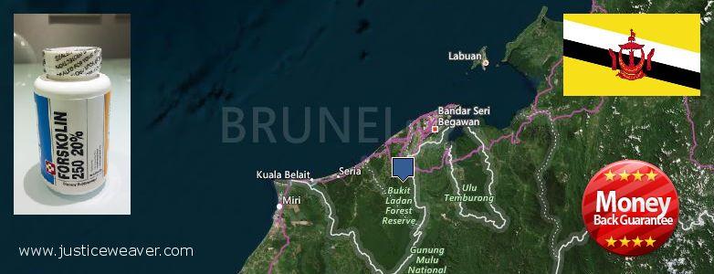कहॉ से खरीदु Forskolin ऑनलाइन Brunei