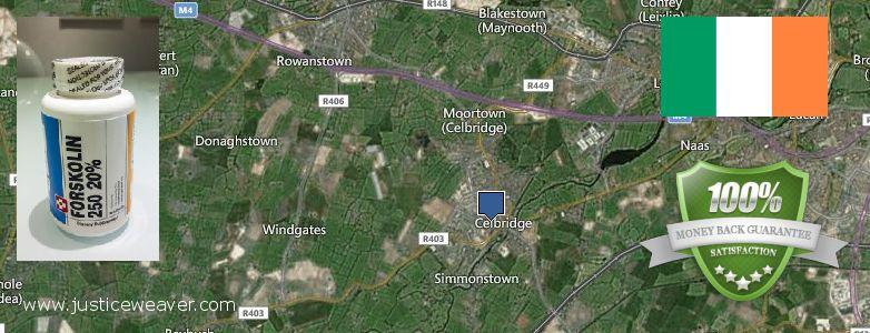 Purchase Forskolin Diet Pills online Celbridge, Ireland