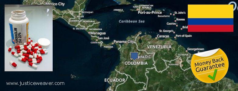 Waar te koop Forskolin online Colombia