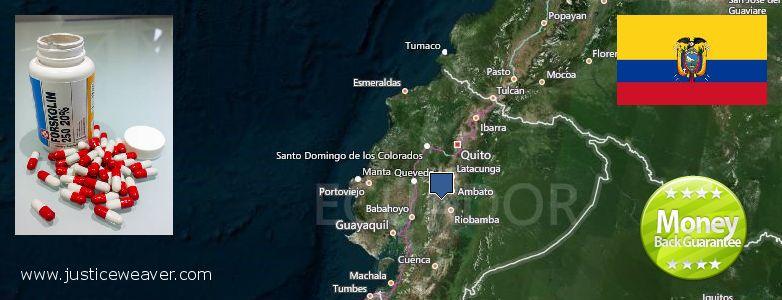 कहॉ से खरीदु Forskolin ऑनलाइन Ecuador