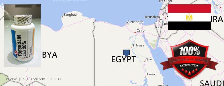 कहॉ से खरीदु Forskolin ऑनलाइन Egypt