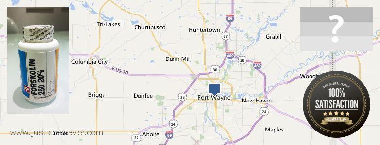 Gdzie kupić Forskolin w Internecie Fort Wayne, USA