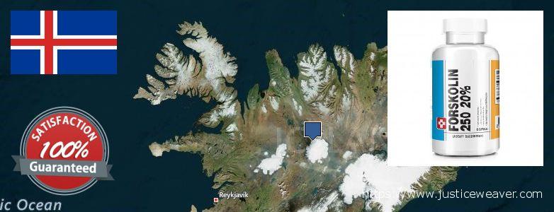 Къде да закупим Forskolin онлайн Iceland