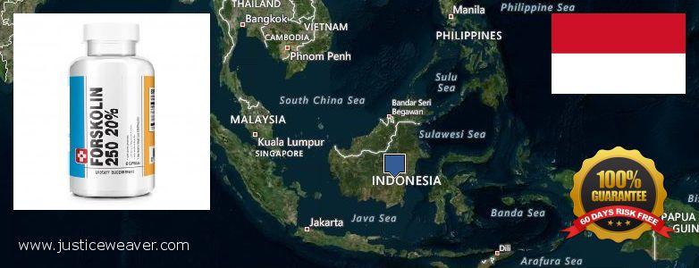 Де купити Forskolin онлайн Indonesia