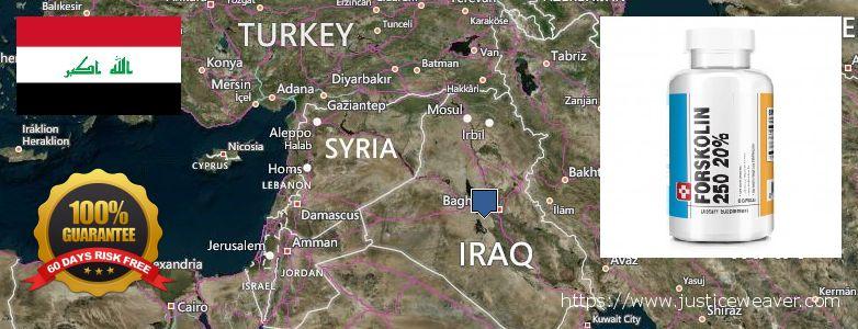 kust osta Forskolin Internetis Iraq