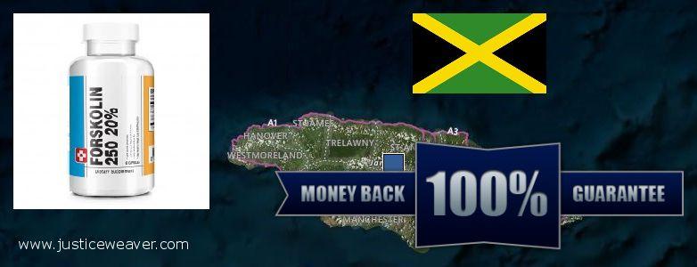 Jälleenmyyjät Forskolin verkossa Jamaica