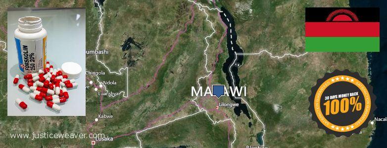 gdje kupiti Forskolin na vezi Malawi