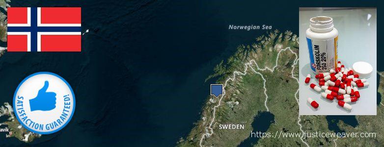कहॉ से खरीदु Forskolin ऑनलाइन Norway
