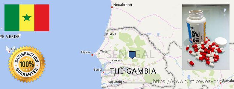 Hvor kan jeg købe Forskolin online Senegal