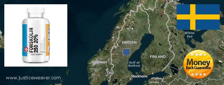 Hvor kan jeg købe Forskolin online Sweden