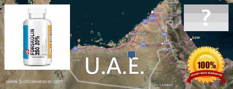 कहॉ से खरीदु Forskolin ऑनलाइन UAE