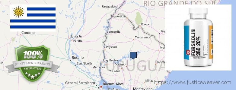कहॉ से खरीदु Forskolin ऑनलाइन Uruguay
