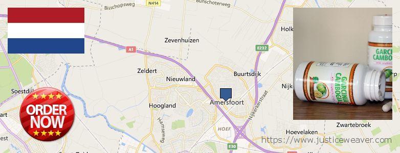 Where to Buy Garcinia Cambogia Extract online Amersfoort, Netherlands