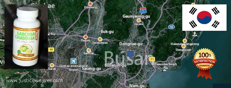 Where to Buy Garcinia Cambogia Extract online Busan, South Korea