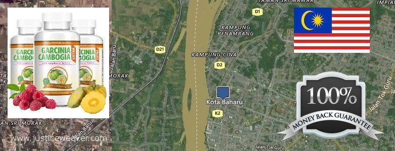 On garcinia cambogia