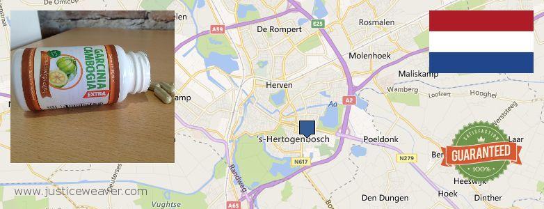 Where to Buy Garcinia Cambogia Extract online s-Hertogenbosch, Netherlands