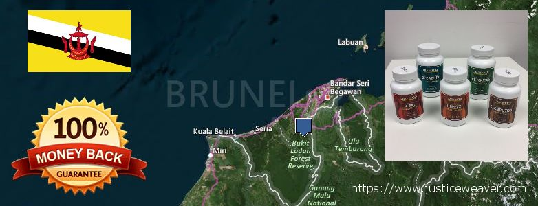 कहॉ से खरीदु Nitric Oxide Supplements ऑनलाइन Brunei
