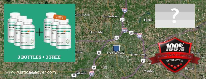 Gdzie kupić Piracetam w Internecie Fort Wayne, USA