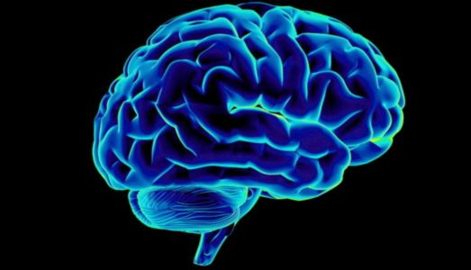 Where Can I Buy Piracetam Nootropil Alternative in Mozambique