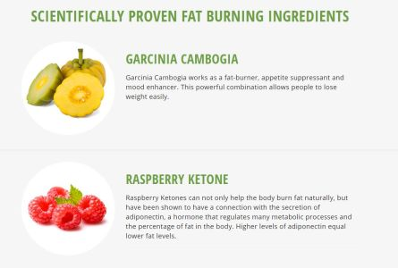 How to lose 12 pounds of body fat photo 9